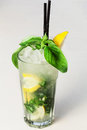 Cocktail delizioso di mojito Immagine Stock