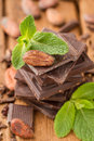 Cocoa bean on a broken dark chocolate bar with mint Royalty Free Stock Images