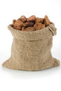 Cocoa beans in burlap bag Stock Photography