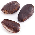 Cocoa beans on a white background Royalty Free Stock Images