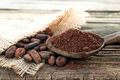 Cocoa beans and wooden spoon Stock Photography