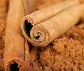 Cocoa and cinnamon Stock Photography