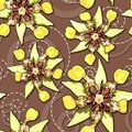 Cocoa flowers seamless texture Royalty Free Stock Photo