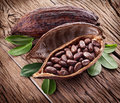 Cocoa pod on a dark wooden table Stock Image