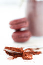 Cocoa powder and macaroons Royalty Free Stock Photography