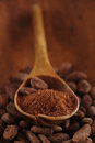 Cocoa powder in spoon on roasted cocoa chocolate beans backgrou background Royalty Free Stock Image