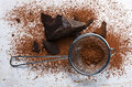 Cocoa solids and cocoa powder close up Royalty Free Stock Photos