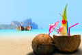 Coconut on the beach in phi phi island thailand Royalty Free Stock Photo