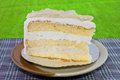 Coconut cake on the ciladon saucer with terrace view Royalty Free Stock Images