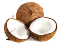 Coconut coco nut on white background Royalty Free Stock Photo