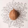 Coconut fruit outline floral hand drawn