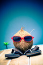 Coconut gent out sightseeing Royalty Free Stock Photo