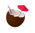 Coconut illustration of a dring in a Royalty Free Stock Images