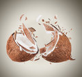 Coconut in motion with breaking pieces Stock Images