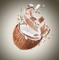Coconut in motion with breaking pieces Stock Image
