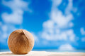 Coconut with ocean beach and seascape shallow dof Stock Photos