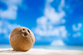 Coconut with ocean beach and seascape shallow dof Stock Photography