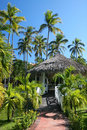 Coconut Palm Trees and Gazebo at Tropical Resort Royalty Free Stock Photography