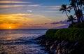 Coconut palms, lava shoreline, maui sunset Royalty Free Stock Photo