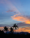 Coconut palms silhouette on dramatic clouds sky sunset background. Royalty Free Stock Photo