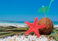 Coconut and pebbles sea star umbrella on white Royalty Free Stock Image