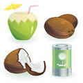 Coconut and products Stock Image