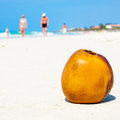 Coconut on a sandy beach in cuba with out of focus people the background Royalty Free Stock Photos