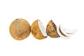 Coconut set iii fresh in half on white background Royalty Free Stock Photography