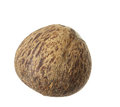 Coconut shell old isolated on white background Stock Image