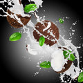 Coconut with splashing milk over dark background Royalty Free Stock Photos