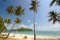 Coconut trees on a beach of angthong marine national park thailand Stock Photo
