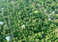 stock image of  Aerial view of kerala village