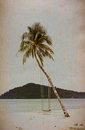 Coconut trees on old paper Stock Photos