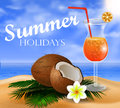 Coconut tropical nut background
