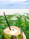 Coconut water on a tropical beach Royalty Free Stock Photo