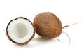 Coconut on a white background Stock Photo