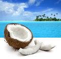 Coconut on white background and beautiful seascape Royalty Free Stock Image