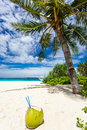 Coconut on white sand beach Stock Photos