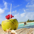 Coconuts on the beach coconut with drinking straw a palm tree at sea Stock Photos