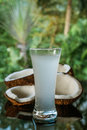 Coconuts and coconut water on the black glass table isolated over blurred palm trees background Royalty Free Stock Photo