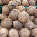 Coconuts displayed in a market Stock Photography