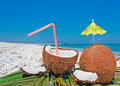 Coconuts and umbrella by the shore on a clear day Stock Photography