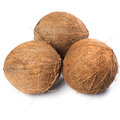 Coconuts on white background fresh Stock Image