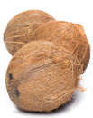 Coconuts on white background fresh Stock Images