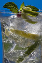 Coctail Stock Image