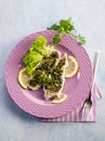 Cod fillet parsley anchovy capers Stock Photos