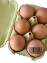 Coded Egg Stock Photography