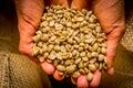 Cofee beans closeup Royalty Free Stock Photo