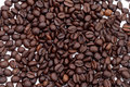Cofee seed Stock Photography