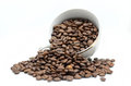 Coffe cup and beans Royalty Free Stock Photo